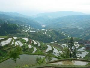 Chine rurale