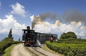 Voyage organisé sur mesure - Darjeeling Sikkim - Inde du nord - Agence de voyage Les Routes du Monde