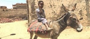 Égypte - Les Routes du Monde