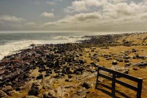 Cape Cross, Namibie - les Routes du Monde