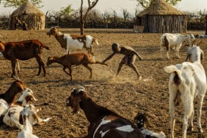 Village Himba, Epupa Falls, Namibie - les Routes du Monde