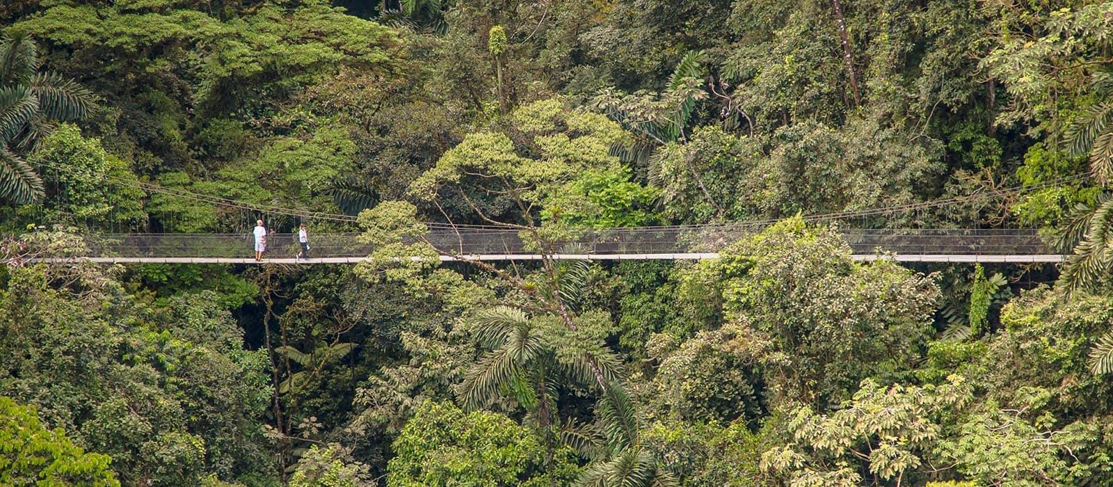 Voyage organisé en petit groupe - Costa Rica - Agence de voyage Les Routes du Monde