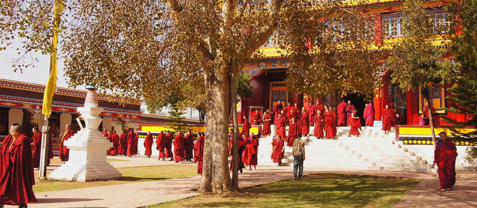 Voyage organisé en petit groupe - Monastère de Menri - Inde - Agence de voyage Les Routes du Monde