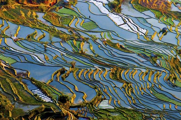 Voyage organisé en petit groupe - Yuan yang - Yunnan - Chine - Agence de voyage Les Routes du Monde