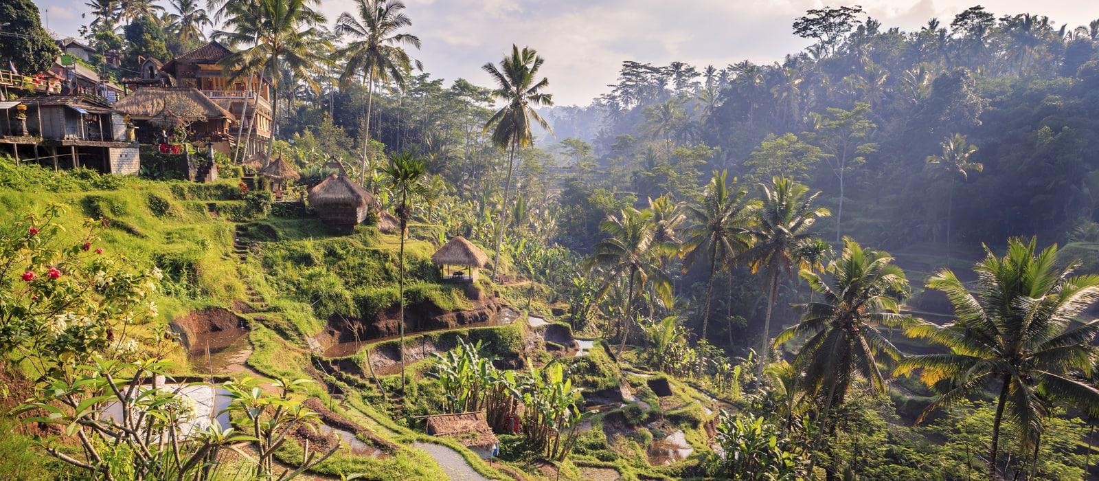 Voyage organisé en petit groupe - Ubud - Bali - Indonésie - Agence de voyage Les Routes du Monde