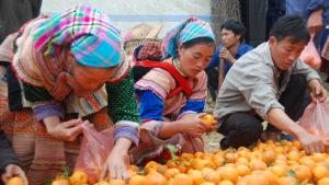 Voyage organisé en petit groupe - marché de Bac Ha - Vietnam - Agence de voyage Les Routes du Monde