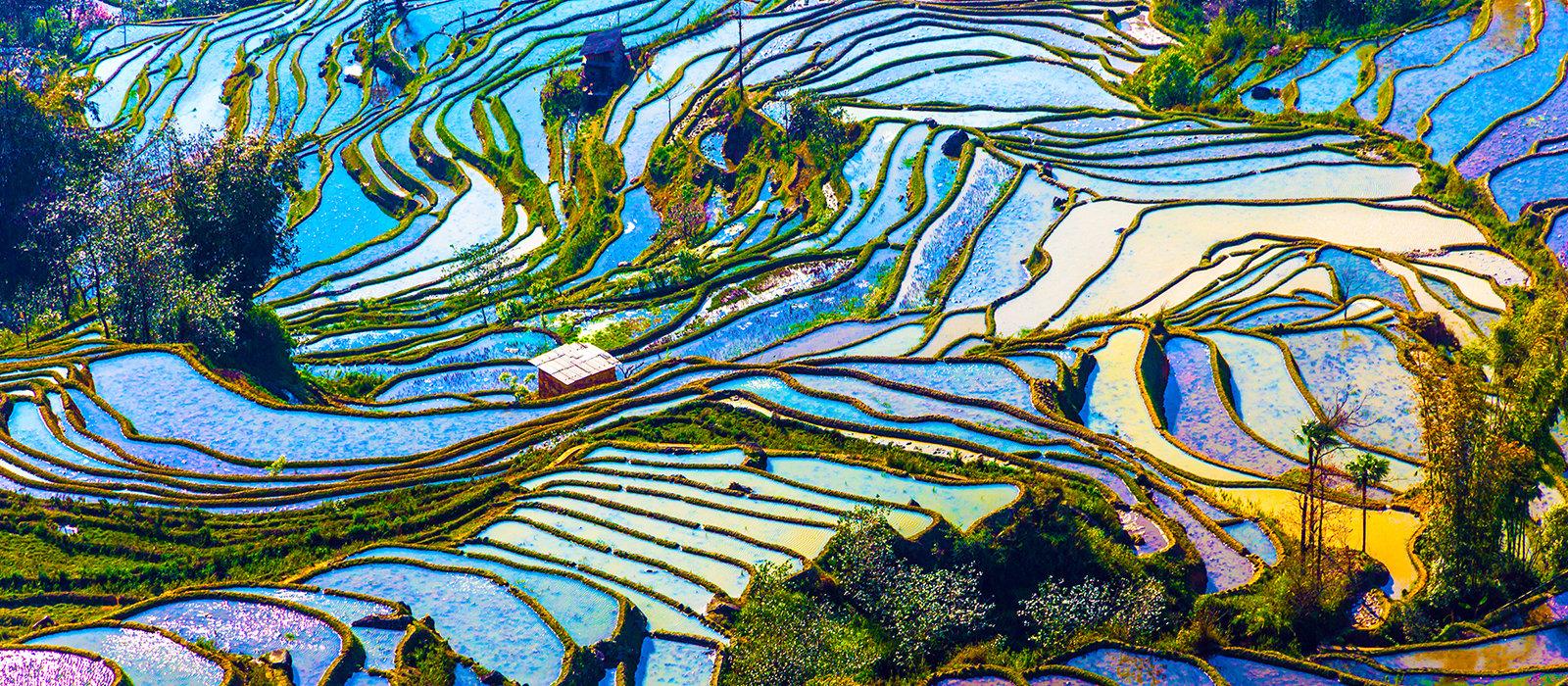 Voyage organisé en petit groupe - Yunnan - Chine - Agence de voyage Les Routes du Monde