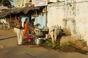 Voyage organisé en petit groupe - Hampi 05 - Inde du Sud - Agence de voyage Les Routes du Monde