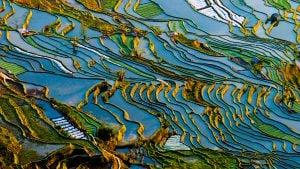 Voyage organisé en petit groupe - YuanYang - Chine - Agence de voyage Les Routes du Monde