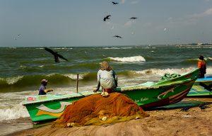 Voyage organisé en petit groupe - Negombo - Sri Lanka - Agence de voyage Les Routes du Monde