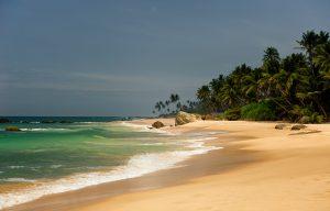 Voyage organisé en petit groupe - Tangale - Sri Lanka - Agence de voyage Les Routes du Monde