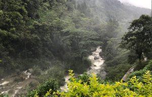 Voyage organisé en petit groupe - Nuwara Eliya - Sri Lanka - Agence de voyage Les Routes du Monde