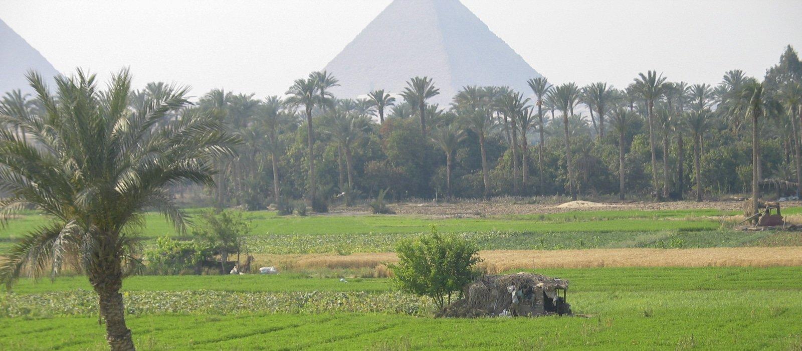 Voyage organisé en petit groupe - pyramides de Kheops - Egypte - Agence de voyage Les Routes du Monde