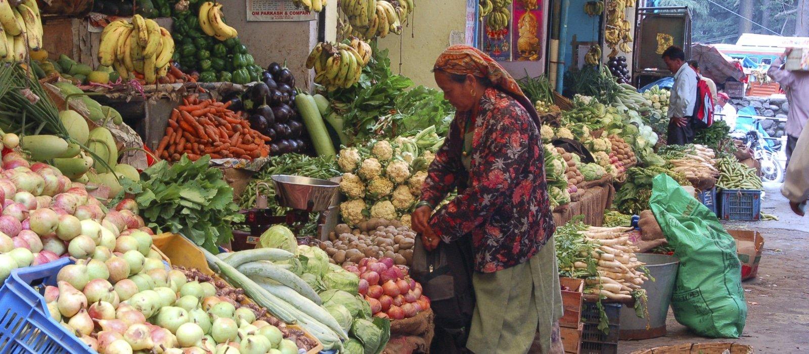 Voyage organisé sur mesure - Manali - Inde du nord - Agence de voyage Les Routes du Monde