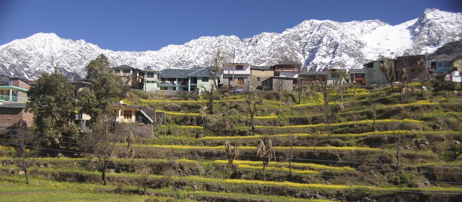 Voyage organisé en petit groupe - Dharamsala - Inde du nord - Agence de voyage Les Routes du Monde