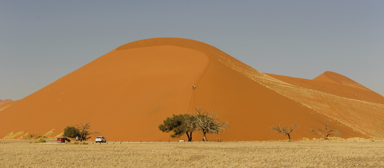 Dune 45 à Sossusvlei, Namibie - les Routes du Monde