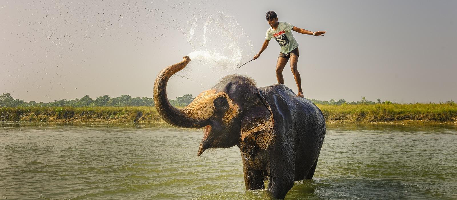 Voyage organisé en petit groupe - Parc Chitwan - Népal - Agence de voyage Les Routes du Monde