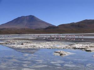 img-diapo-tab - Bolivie-1600x900-10.jpg