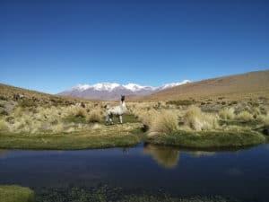 img-diapo-tab - Bolivie-1600x900-13.jpg