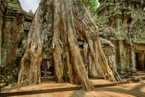 img-diapo-tab - Cambodge-1600x900-28.jpg