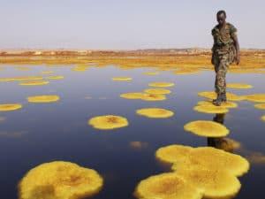 Voyage organisé en petit groupe - Dalol Danakil - Éthiopie - Agence de voyage Les Routes du Monde