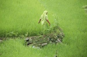 Voyage organisé sur mesure - Garhwal - Inde du nord - Agence de voyage Les Routes du Monde
