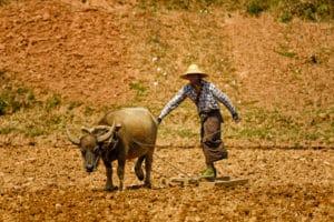 img-diapo-tab - Myanmar-1600x900-23.jpg