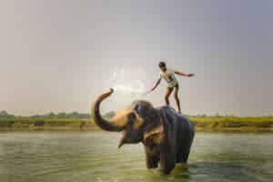 Voyage organisé en petit groupe - parc de Chitwan - Népal - Agence de voyage Les Routes du Monde