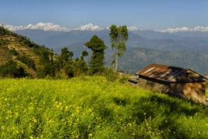 Voyage organisé en petit groupe - Himalaya - Népal - Agence de voyage Les Routes du Monde