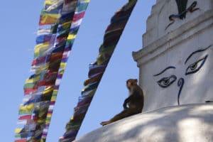 img-diapo-tab - Nepal-1600x900-2.jpg
