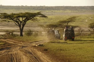 Voyage organisé en petit groupe - Parc Ngorongoro - Tanzanie - Agence de voyage Les Routes du Monde