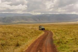 Voyage organisé en petit groupe - Parc Serengeti - Tanzanie - Agence de voyage Les Routes du Monde
